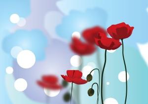 poppy-596569_960_720